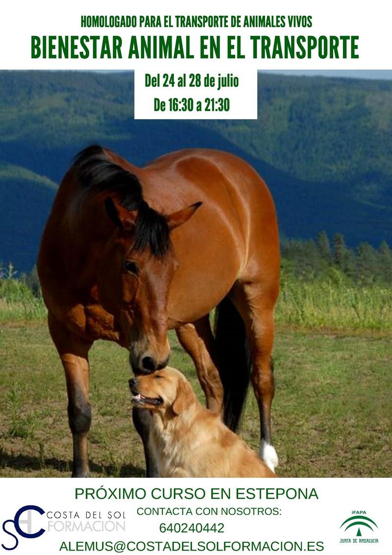 Curso bienestar animal transporte